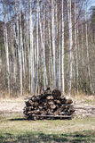 Pile of fire wood in countryside Royalty Free Stock Photos
