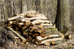 Pile of fire wood Royalty Free Stock Photography
