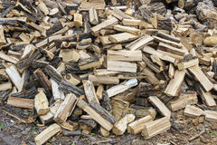 A pile of firewood Stock Images