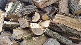 A pile of firewood.Firewood. Stock Photo