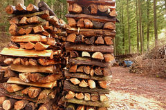 The pile of firewood Royalty Free Stock Photo