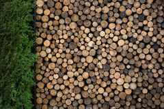 Pile of Firewood in Garden Royalty Free Stock Image