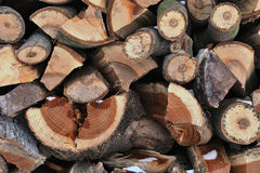 The pile of firewood Stock Photography