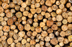 Pile of firewood logs background. Pile of firewood stacking ready for use Royalty Free Stock Photography