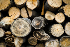 Pile of firewood logs Stock Photo