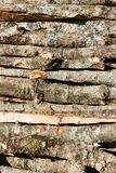 A pile of firewood fro cut logs. Firewood logs piled on to a heap. Natural texture. Vertical composition royalty free stock images