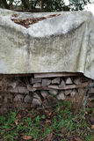 Pile with firewood and plastic tarpaulin Stock Images