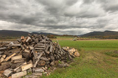 Pile firewood prepared for winter Stock Images