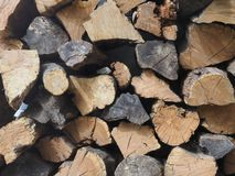 A pile of firewood, real felled trees, lie, folded in a small line in even rows. Stock Images