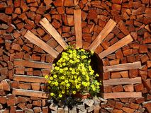 Pile of firewood with vase of yellow flowers royalty free stock photo