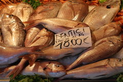 Pile of fishes at the market aligned on the counter desk prepared for the selling. Placard with the price on the top. Venice morning market Stock Image