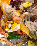 Pile of food and household waste closeup. Texture. Stock Photography