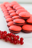Pile of forest fruits marron cookies Royalty Free Stock Image