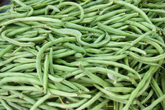Pile of french beans Stock Images