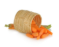 Pile of fresh baby carrots laying on a white background.  Royalty Free Stock Photography