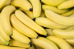 Pile of fresh bananas. Fresh healthy pile of bananas Stock Image