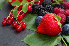 Pile  of  fresh berries Stock Images