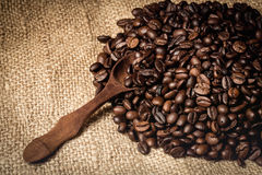 Pile of fresh and bio aromatic coffee beans and spoon Stock Photos