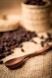 Pile of fresh and bio aromatic coffee beans and spoon Royalty Free Stock Image