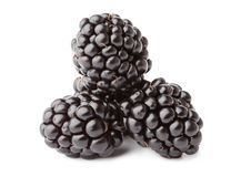 Pile of fresh blackberries isolated on white Royalty Free Stock Photo
