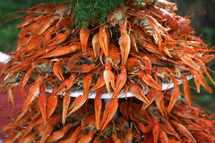 A pile of fresh boiled crayfish with green dill Stock Photo