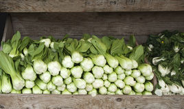 Pile of fresh Bok Choy at a market Stock Photography