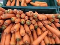 Pile of fresh carrots at for display at market. Closeup pile of fresh carrots at for display at supermarket. health eating concept Stock Images