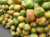 Pile of Fresh Coconuts. Large clusters of coconuts are stored on the sidewalk by coconut water stand Stock Photography