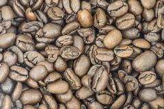 A Pile of Fresh Coffee Beans.  Stock Photo