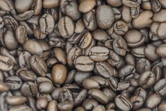 A Pile of Fresh Coffee Beans.  Stock Photography