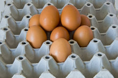 Pile fresh eggs Stock Photography