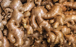 Pile of fresh ginger roots for sale on the market in Bangkok, Thailand, for background. Pile of ginger roots for sale on the market in Bangkok, Thailand Royalty Free Stock Photography