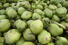 Pile of Fresh Green Brazilian Coconuts. Sit outdoors in natural tropical light Royalty Free Stock Image