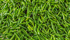 Pile of fresh green chilli peppers texture. Raw food background. Close up. Traditional vegetable market in Bangkok. Thailand. Selective focus Stock Photo