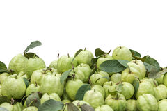 Pile of fresh green guava in market isolated on white. Saved wit Stock Photography