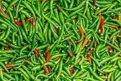 Pile of fresh green and red chilli peppers mixed texture. Raw food background. Close up. Traditional vegetable market in. Bangkok, Thailand. Selective focus Stock Photography