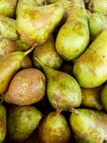 Pile of fresh harvested green yellow brown conference pears. Organic produce at farmer`s market. Mediterranean Royalty Free Stock Photography