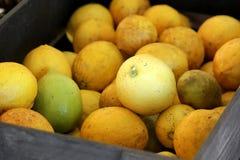Fresh lemons in wooden box Royalty Free Stock Photos
