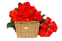 Pile  of fresh  orange roses with basket Royalty Free Stock Photo