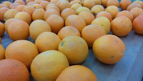Pile of fresh oranges in tray Stock Image