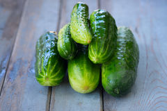 A pile of fresh picked cucumbers on wooden background. Photos of a pile of fresh picked cucumbers on wooden background Royalty Free Stock Photo