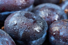 Pile of fresh plums Royalty Free Stock Images
