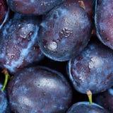 Pile of fresh plums Stock Photos