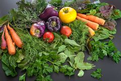 A pile of fresh produce including carrots, peppers, tomatoes, dill, parsley and sorrel. stock photos