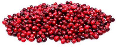 Pile of Fresh Raw Cranberries. Large Pile of Fresh Raw Cranberries Over White Stock Photography