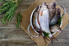 A pile of fresh raw fish on a wooden background. Top view. Carp. Fresh catch Stock Images