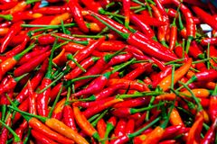 Pile of fresh red chilli peppers texture. Raw food background. Close up. Traditional vegetable market.lose-up of some red chillies mixed royalty free stock photography