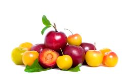 Pile of fresh red and yellow plums with leafs Royalty Free Stock Photography
