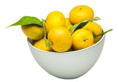 Pile of fresh ripe mandarin with small twigs and leaves in bowl. Isolated on white background stock images