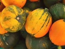 Pile of fresh ripe pumpkins. Pile of fresh ripe green and orange pumpkins royalty free stock photos